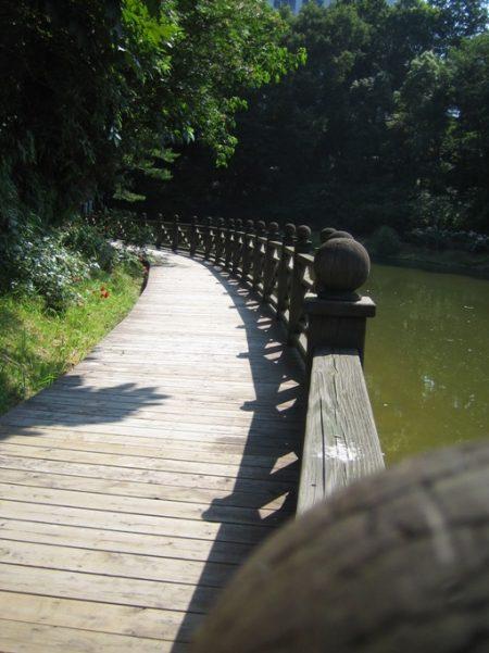 ラッキー 今日 生島 カラー の おはよう ヒロシ は の 一直線